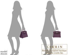 Hermes Birkin bag 25 Raisin Epsom leather Silver hardware