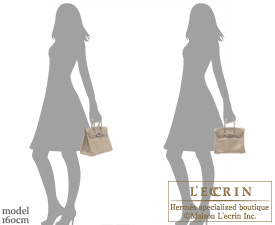 Hermes Birkin bag 25 Ficelle Lizard skin Silver hardware | Hermes