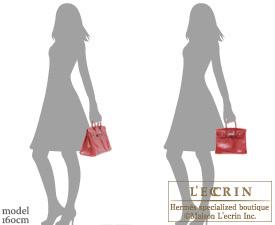 Hermes Birkin bag 25 Rouge moyen Lizard skin Silver hardware