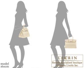 Hermes Birkin bag 30 Parchemin Clemence leather Silver hardware