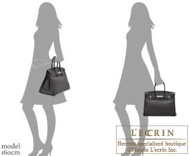 Hermes Birkin bag 35 Prunoir Clemence leather Silver hardware