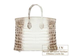 Hermes Birkin bag 25 Himalaya Matt niloticus crocodile skin Silver ...