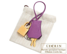 Hermes Birkin bag 25 Trench/Anemone Togo leather Gold hardware